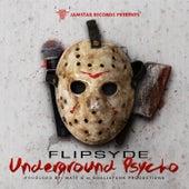Underground Psycho by Flipsyde