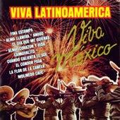 Viva Latinoamerica (Mariachi Latinoamericano) by Mariachi Mexico De Pepe Villa
