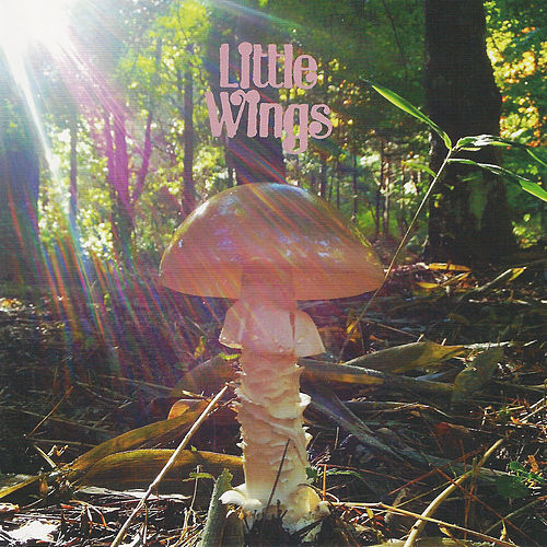 Last by Little Wings