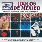 Serie Homenaje Ídolos de México by Various Artists