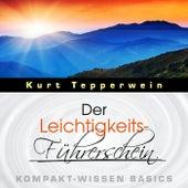 Der Leichtigkeits-Führerschein - Kompakt-Wissen Basics by Kurt Tepperwein
