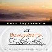 Der Bewusstseins-Führerschein - Kompakt-Wissen Basics by Kurt Tepperwein