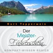 Der Meister-Führerschein - Kompakt-Wissen Basics by Kurt Tepperwein