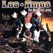 Pantano De Cocodrilos by Los Amos De Nuevo Leon