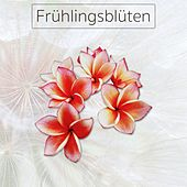 Frühlingsblüten by Various Artists