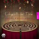 Labyrinth der Töne, Vol. 11 - Deep & Tech-House Music by Various Artists