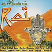 La route du raï by Various Artists