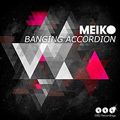 Banging Accordion by Meiko