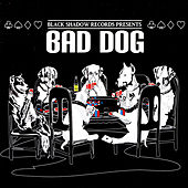 Black Shadow Records Presents: Bad Dog von Various Artists
