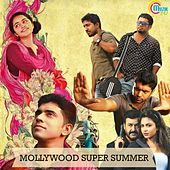 Mollywood Super Summer by Various Artists