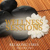 Wellness Sessions, Vol. 1 (Relaxing Vibes) by Various Artists