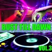 Bust Till Dawn, Vol.3 by Various Artists
