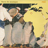 Raï, terre de musique by Various Artists