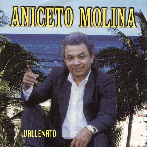 Vallenato by Aniceto Molina