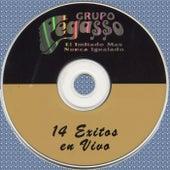 14 Exitos en Vivo (En Vivo) by Grupo Pegasso