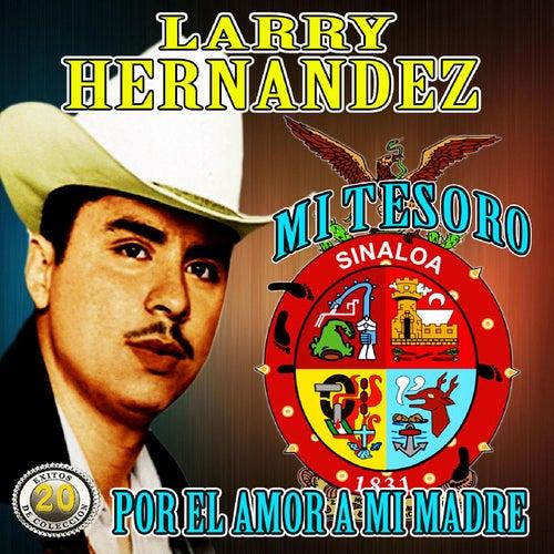 Mi Tesoro Y Por El Amor a Mi Madre by Larry Hernández