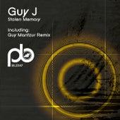 Stolen Memory by Guy J
