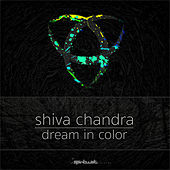 Dream In Color von Shiva Chandra