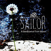 A Dandelion At First Glance by Sailor & I