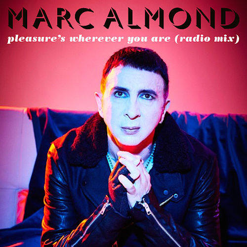 Pleasure's Wherever You Are by Marc Almond
