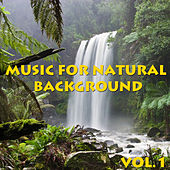Music For Natural Background, Vol.1 by Various Artists