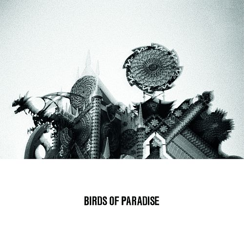 Love Is Confusion by The Birds Of Paradise