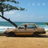 Joan by Joan