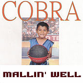 Mallin' Well von Cobra