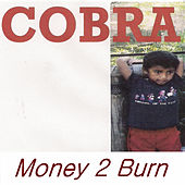Money 2 Burn von Cobra