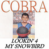 Lookin' 4 My Snowbird von Cobra