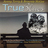 True Blues by Sonny Terry & Brownie McGee