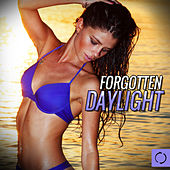 Forgotten Daylight by Various Artists