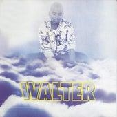 Dzongololo by Walter