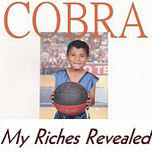 My Riches Revealed von Cobra