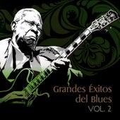 Grandes Éxitos del Blues, Vol. 2 by Various Artists