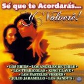 Sé Que Te Acordarás... Y Volveré! by Various Artists