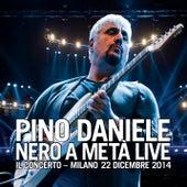Nero a metà live - Il Concerto - Milano, 22 dicembre 2014 by Pino Daniele