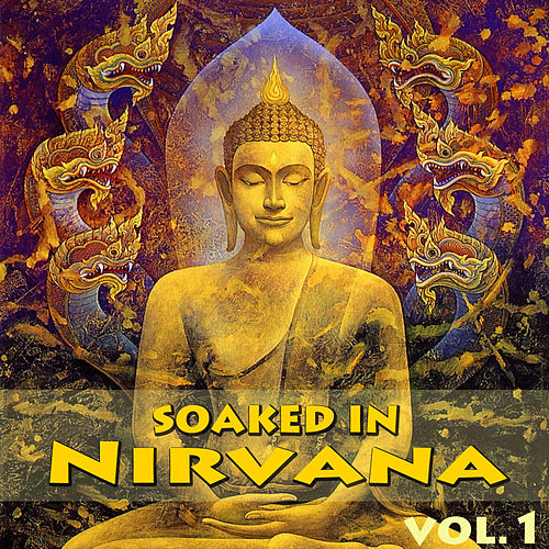 Soaked In Nirvana, Vol.1 by Dune