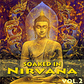 Soaked In Nirvana, Vol.2 by Dune