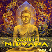 Soaked In Nirvana, Vol.4 by Dune