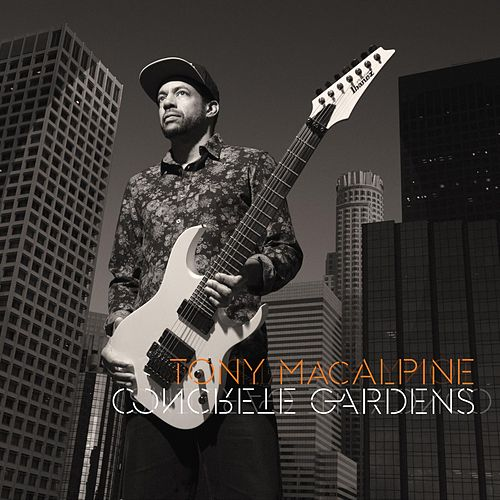 Concrete Gardens by Tony MacAlpine
