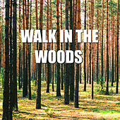 Walk In The Woods by Spirit