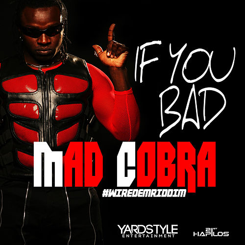 If You Bad - Single by Mad Cobra