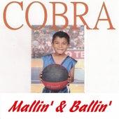 Mallin' & Ballin' von Cobra