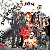 Afro Introduction by Various Artists
