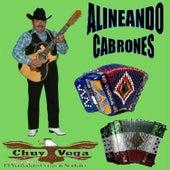 Alineando Cabrones by Chuy Vega