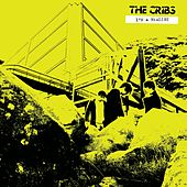 I'm A Realist EP by The Cribs