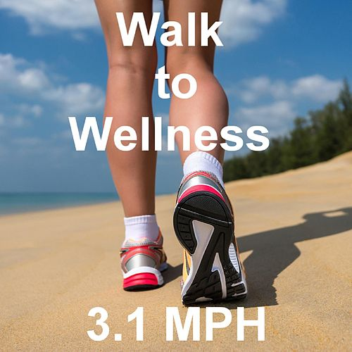 Walk to Wellness by Tom Diffenderfer