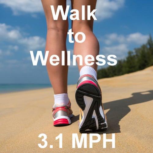 Walk to Wellness by Tom Diffenderfer