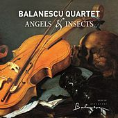 Angels & Insects by Balanescu Quartet